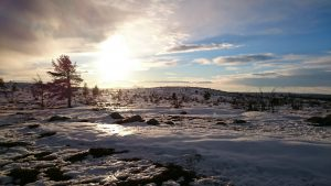 Hede, Vinter, Snö