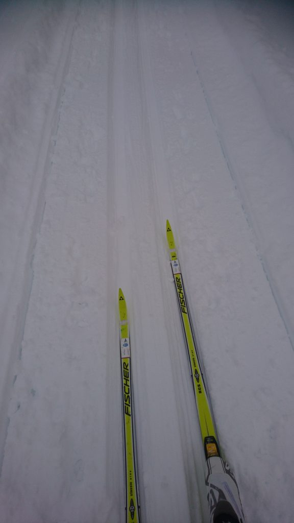 Skidor, Längdåkning, Vasaloppet